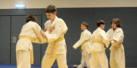Randori im Judo-Training